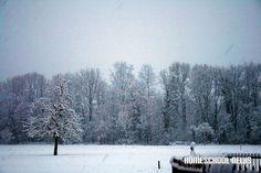 Schnee- und Frost-Impressionen, Snow and Frost Impressions