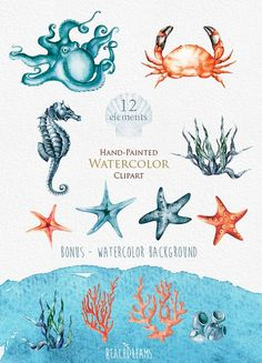 Nautical watercolor clipart. Marine. Ocean. by ReachDreams on Etsy