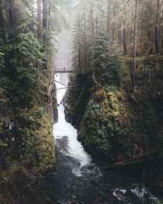 The mighty Sol Duc Falls in Olympic National Park [OC][10801350] #reddit