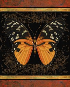 I uploaded new artwork to fineartamerica.com! - 'Butterfly Treasure-Shelia' - http://fineartamerica.com/featured/butterfly-treasure-shelia-jean-plout.html via @fineartamerica