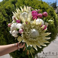 🌸Summer Beautiful Bouquet 🌸 Something unique for a shiny and happy summer day 🌸 #flowers #thessaloniki #peonies #flower #pink #flowerstagram #thessalonikiflowersdelivery #thessalonikiflowers #instapic #instaflower Happy Summer, Summer Days, Thessaloniki, Flower Delivery, Peonies, Succulents, Floral Wreath, Bouquet, Wreaths