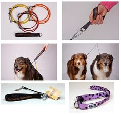 Chew proof leashes for all those leash chewing dogs.