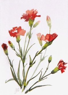 63 Ideas for flowers painting ideas beautiful Watercolor Pictures, Watercolor Cards, Watercolor Flowers, Watercolor Paintings, Watercolors, Painting Flowers, Art Floral, Carnations, Botanical Art