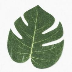 Amazon.com: Artificial Tropical Leaves (6 dozen) - Bulk: Toys & Games  Decor for tables
