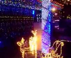 SHOWROOM: LED NET LIGHTS Christmas Net Lights, Showroom, Led, Concert, World, Youtube, Concerts, Fashion Showroom, Peace