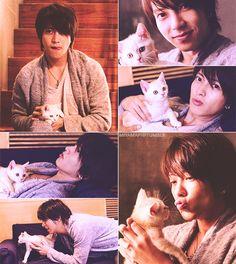 yamap + kitten = fangirl heaven