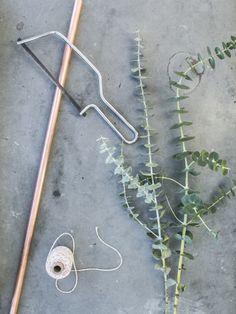 DIY Hangende Eucalyptus Mooiwatplantendoen.nl