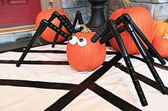 Creep your trick-or-treaters out with a gigantic spider pumpkin! Use sprinkler pipes to create legs and painted egg cartons for eyes. #halloween #spider #pumpkin #ideas