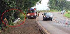BLOG DO MARKINHOS: Prefeito de Lunardelli sofre acidente em Ivaiporã
