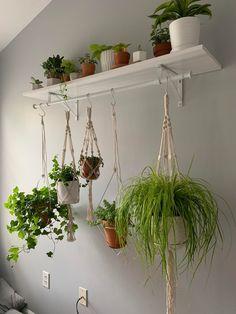 Indoor Plant Wall, Indoor Garden, Indoor Plants, Hanging Plant Wall, House Plants Hanging, Room With Plants, House Plants Decor, Office With Plants, Room Ideas Bedroom