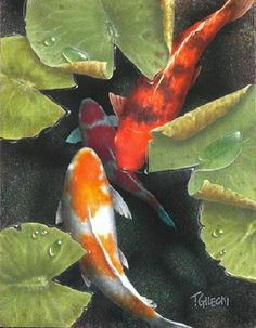 (Canada) Under the canopy by Terry Gilecki ). acrylic on canvas. Koi Fish Drawing, Koi Fish Tattoo, Fish Drawings, Koi Art, Fish Art, Watercolor Animals, Watercolor Art, Koi Kunst, Koi Painting