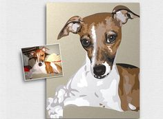 Look!: Paint By Numbers Pet Portraits
