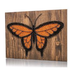 Monarch Butterfly Kit - String of the Art