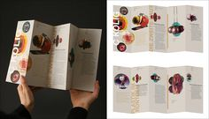20 Modern Brochure Design Ideas & Template Examples for Your 2019 Projects - Graphic Templates Search Engine Brochure Design Samples, Company Brochure Design, Graphic Design Brochure, Corporate Brochure Design, Creative Brochure, Brochure Design Inspiration, Branding Design, Design Ideas, Identity Branding