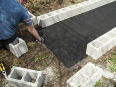 Raised bed garden with cinder blocks. Hardware cloth and landscape fabric in bottom.