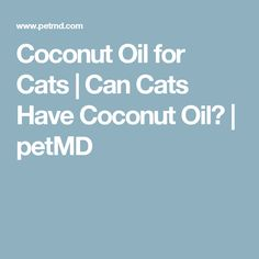 Coconut Oil for Cats   Can Cats Have Coconut Oil?   petMD