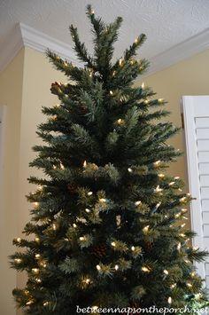 How To Repair Christmas Tree Lights Trees Christmas Trees And Home - Christmas Tree Lights Repair