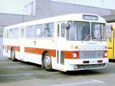 Ikarus 556 '1962–73