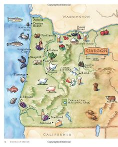 You forgot half the state, map makers! Oregon Map, Salem Oregon, Oregon Travel, Travel Maps, Travel Posters, Travel Destinations, Willamette Valley, Brew Pub, All I Ever Wanted