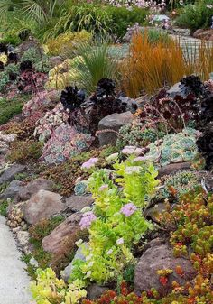 Cool 75 Awesome Front Yard Rock Garden Landscaping Ideas https://decorapartment.com/75-awesome-front-yard-rock-garden-landscaping-ideas/