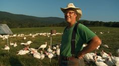 TONS of links on this page for Polyface (Joel Salatin) sustainable agriculture.