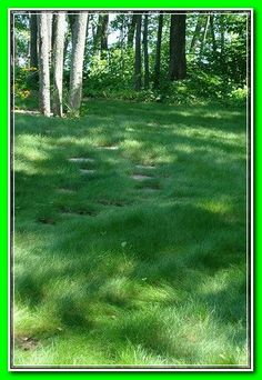 Best tummy Yard and Backyard Landscaping Ideas ... * Know more by clicking the image link.