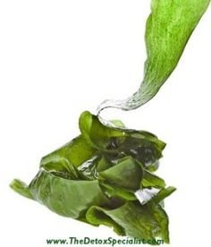 Top 3 Ways Of Detoxing Your Body With Sea Kelp