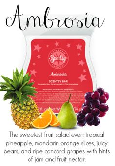 Ambrosia. Septembers Scent of the month get yours today https://stephanie88.scentsy.us