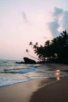 Beaches of Sri Lanka Guide