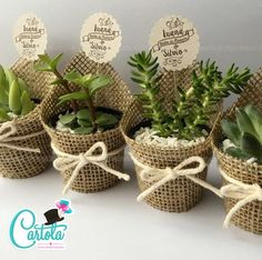 Wedding Favors Our Wedding Wedding Gifts Wedding Decorations Baby Shower Favors Baby Shower Themes Bridal Shower Ideas Para Fiestas First Communion Baby Shower Favors, Baby Shower Themes, Baby Shower Decorations, Bridal Shower, Wedding Decorations, Shower Ideas, Decor Wedding, Shower Gifts, Deco Cactus