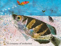 Vintage Children's Book, Fishes by Brian Wildsmith