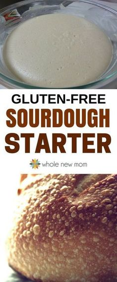 Gluten free sourdough starter