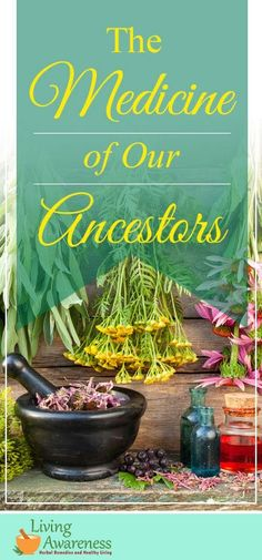 The Medicine Of Our Ancestors - Living Awareness Institute