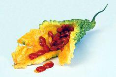 Şeker hastası olmamak için bu besini tüketin! Faydalarıyla binbir derde deva ! - Şifalı Tarifler Avocado Toast, Pineapple, Fruit, Breakfast, Health, Ethnic Recipes, Food, Art Art, Angles