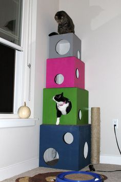 """Amazing cat condo / box / tree !!!! Think I can make the bottom one big enough to hide the litter box. Maybe add a hinged door on the side of the bottom box for easy litter box access??? Keep the dog from hunting for """"treasure"""" in the cat box. I love the colors that they used. It doesn't even look like a cat condo! It looks like a piece of art!"""