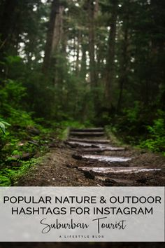 Forest Love → Edited with the Artist Series (Complete Collection) – Lightroom Presets incl. All New Releases Permaculture, Parents Choice, Forest Pictures, Forest Photography, Happy Earth, Single Parenting, Parenting Tips, Green Trees, Instagram Tips