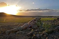 Best US Army Photos - Business Insider