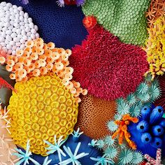 Colorful Paper-Cut Sculpture Captures the Diversity of a Coral Reef