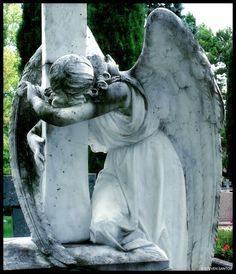 Find images and videos about art, angel and cemetery on We Heart It - the app to get lost in what you love. Cemetery Angels, Cemetery Statues, Cemetery Art, Angel Statues, Cemetery Headstones, Angels Among Us, Angels And Demons, Statue Ange, Sculpture Art