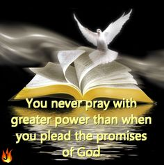 You will never pray with greater power than when you plead the