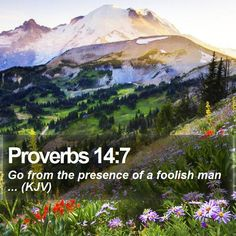 Proverbs 14:7 Go from the presence of a foolish man ... (KJV)  #Landscapes #Scripture #Respect #Love #VOTD #OldTestament #GodsChristianWarriors http://www.bible-sms.com/