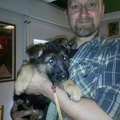 Pikuuinen Elsa koira poikkesi Verstaalla ja Pete sai sen syliin :-)