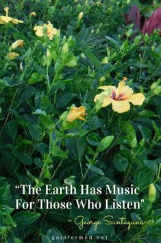 Inspirational quote by George Santayama. The earth has music for those who listen. Travel quote.