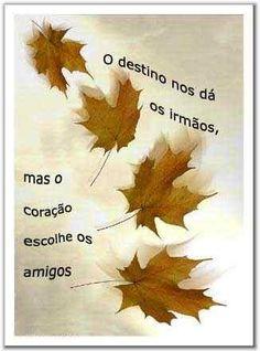 Imagens de Amizade - Amizade