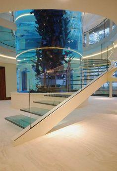 stunning-staircase-with-a-modern-aquarium.jpg (736×1074)