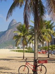 jane-sweeney-brazil-rio-de-janeiro-leblon-beach-bike-leaning-on-palm-tree.jpg (338×450)