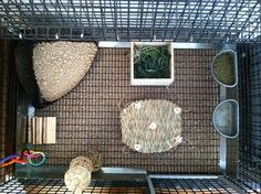 Bunny cage setup. Litter box, veggie's, wood sticks, timothy hay mat, baby teething toys, water, and pellets.