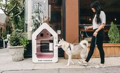 Dog Parker because even your dogs deserve a smart home