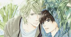 Haru e Ren Kaido - Super Lovers Y