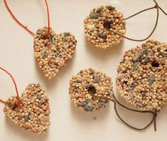 For the Birds DIY Ornaments | Make these bird seed ornaments to feed the birds this winter.